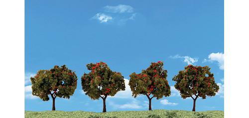 """Apple Tree 2""""-3"""" 4/"""