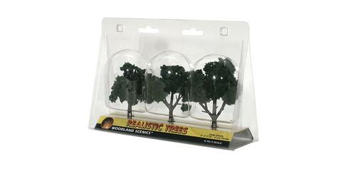 "Trees 3-4"" Dark Grn 3/"
