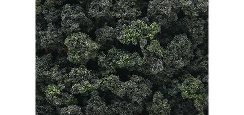 Bshs Clmp Foliage Frs Bln