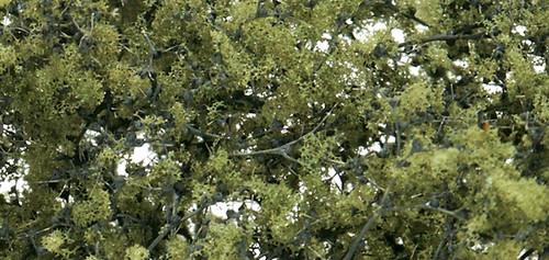 Fine-Leaf Foliage Olv Grn