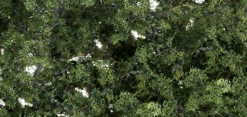 Fine-Leaf Foliage Med Grn