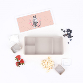 MAE lunchbox