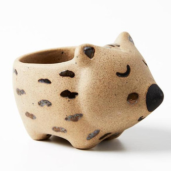 JONES & CO wombat mini planter