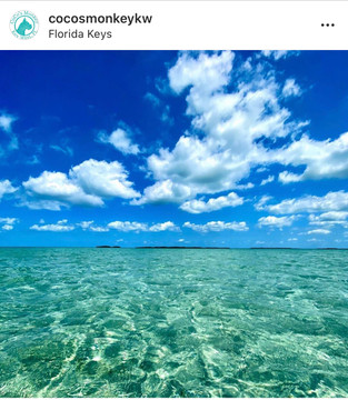 Our buff's beautiful image is actually a photo taken by Coco herself while out at the sandbar on a Florida Keys boat day!