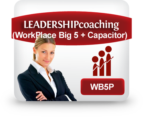 WB5P Workplace Big Five Profile + Capacitor Report