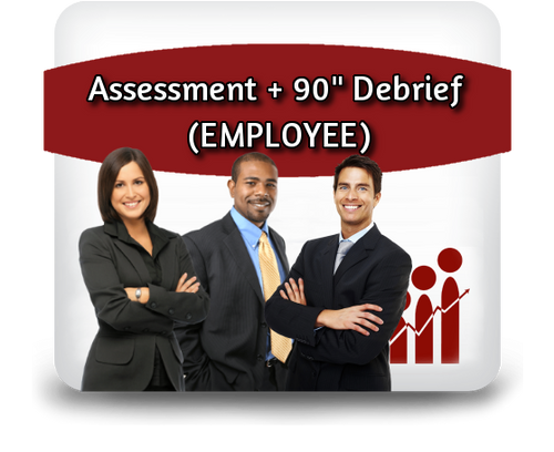 "Employee Profiling - Assessment + 90"" Debrief"