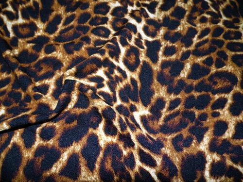 bullet cheetah print