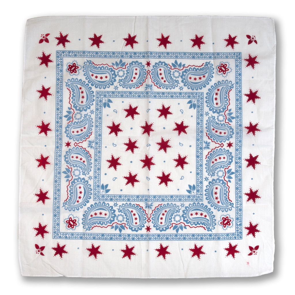 Chicago Flag Bandana
