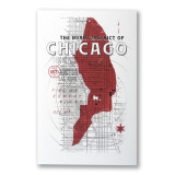 Burnt District of Chicago Screen Print