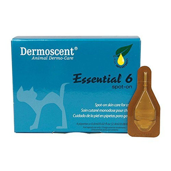 dermoscent essential 6 cat