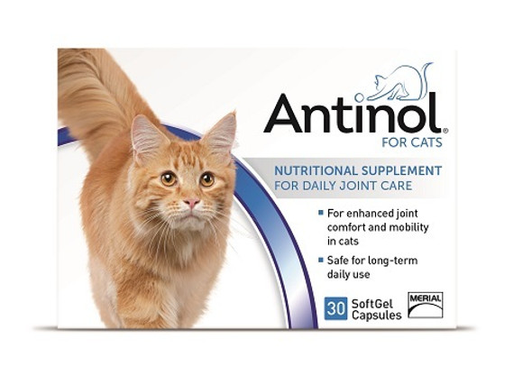 antinol cat