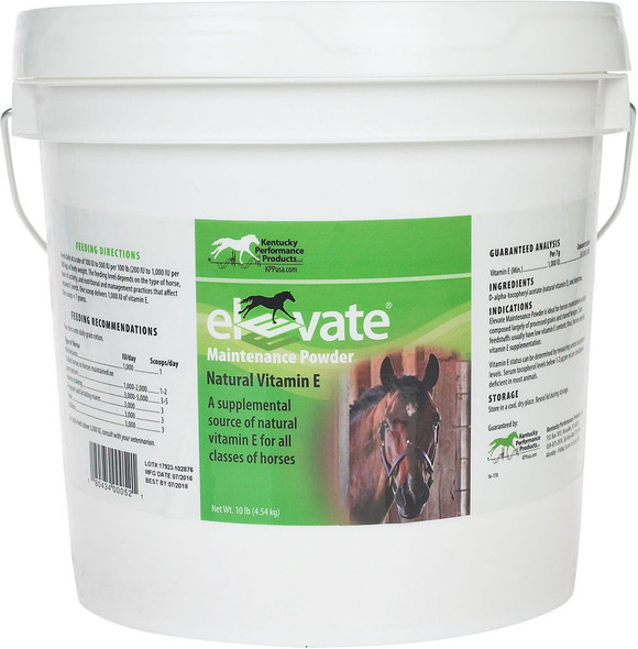 Elevate Maintenance Powder 10lb
