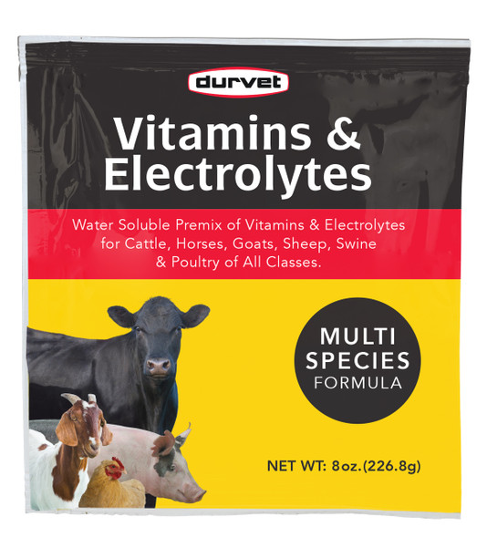 Vitamins and Electrolytes, Water Soluble Premix