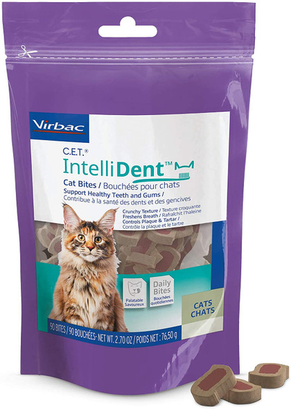 intellident cat bites