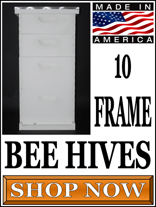 10 Frame Bee Hives For Sale