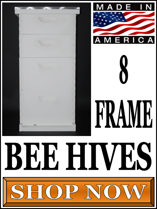 8 Frame Bee Hives For Sale