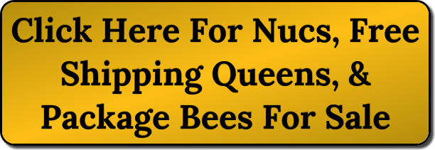 Where Do You Buy Honey Bees - Lappe's Bee Supply & Honey