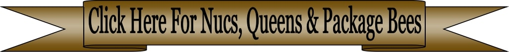 United States Nucs, Shipped Queens & Package Bees company where to buy Nucs, Shipped Queens & Package Bees for sale in and around Iowa and the USA free shipping Lappe's Bee Supply & Honey Farm LLC around East Peru Iowa 502