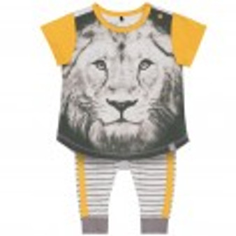 Lion Striped Pant Set