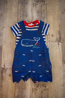 Whale Shotall & Bodysuit