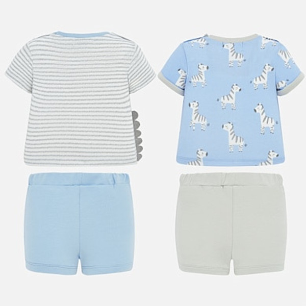 Blue Zebra Grey  Short Set