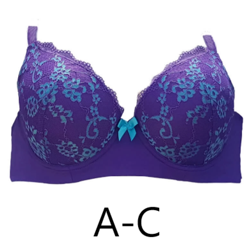 Lady Emprezz 1002 Frenchie Bra Purple and Aqua