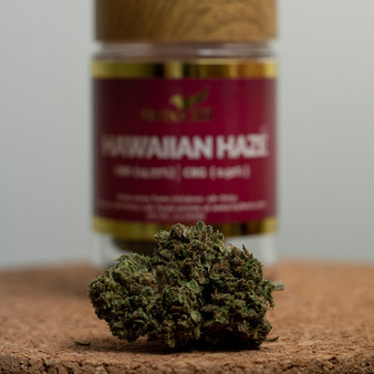 Hemp Flower - Hawaiian Haze