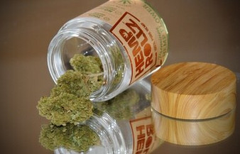 Hemp Rollz Magic Bullet