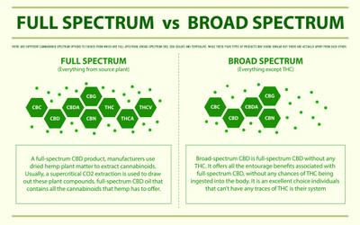 Full Spectrum vs. Broad Spectrum vs. CBD
