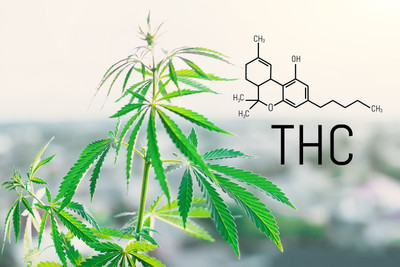 What Is THC Delta-8? - Learn More About Delta-8 Products