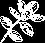 Grain Icon