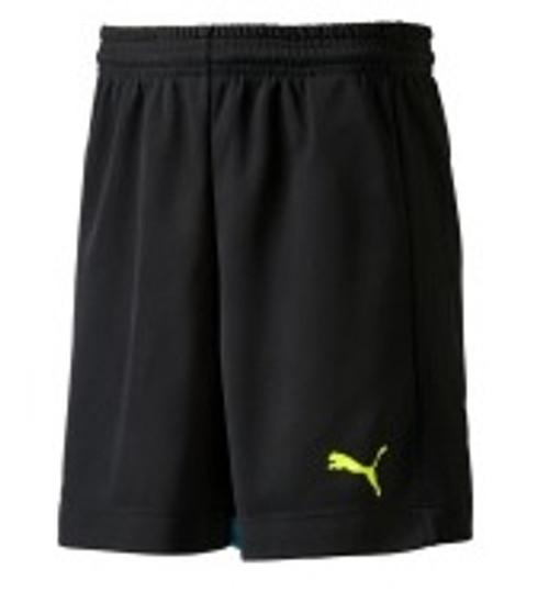 PUMA IT EvoTRG Shorts - Black