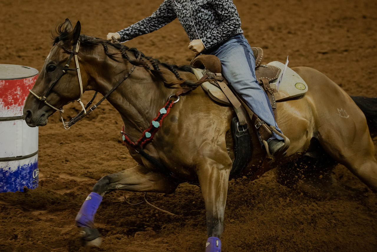 Leaky Gut Syndrome in Barrel Horses