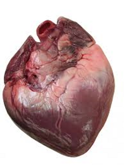 Whole pig hearts