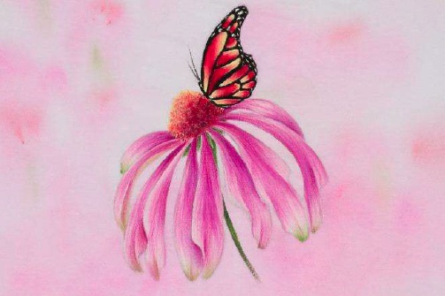 Coneflower and Monarch - E-Packet - Debra Welty