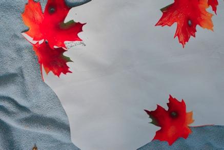 Fall Leaf Table Runner - E-Packet - Debra Welty
