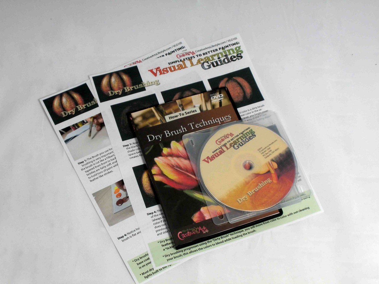 Visual Learning Guide + DVD: Dry Brushing & How to Dry Brush DVD Combo