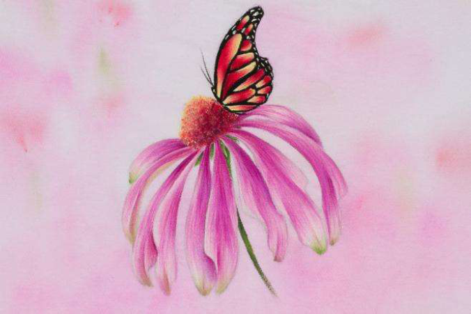 Coneflower and Monarch DVD - Debra Welty