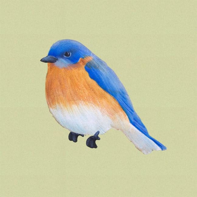 Simple Stenciled Songbirds Eastern Bluebird - E-Packet - Patricia Rawlinson