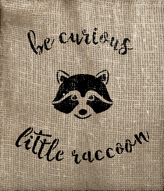 """Be Curious Little Raccoon - Curved Hand Script - Word Art Stencil - 6"""" x 7"""" - STCL1767_1 - by Studio R12"""