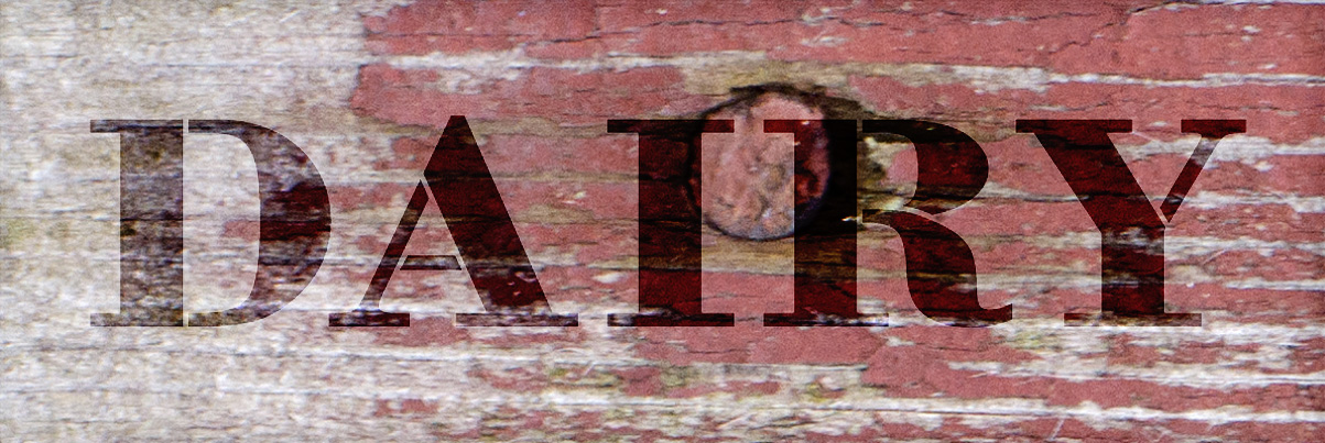 "Dairy - Farmhouse Serif - Word Stencil - 20"" x 6"" - STCL1961_3 - by StudioR12"