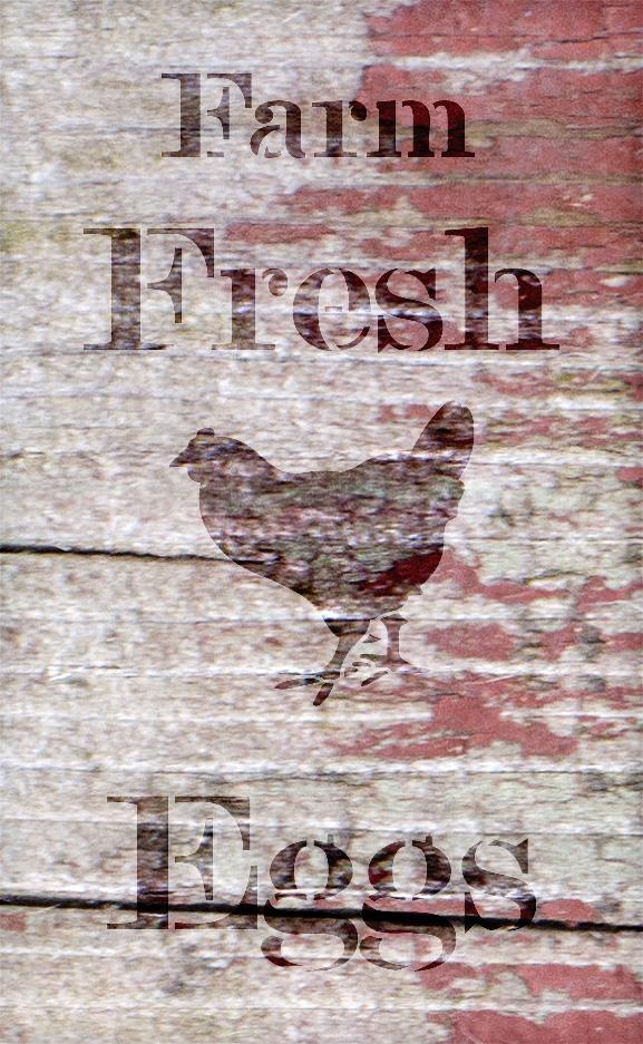"Farm Fresh Eggs - Chicken - Serif - Word Art Stencil - 17"" x 30"" - STCL2057_5 - by StudioR12"