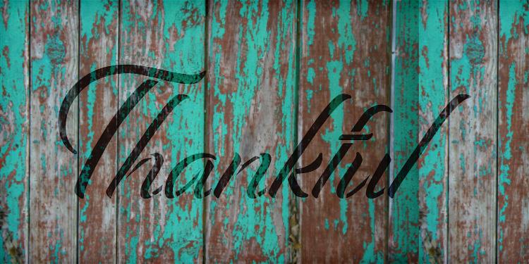 "Thankful - Festive - Word Stencil - 20"" x 8"" - STCL2102_4 - by StudioR12"