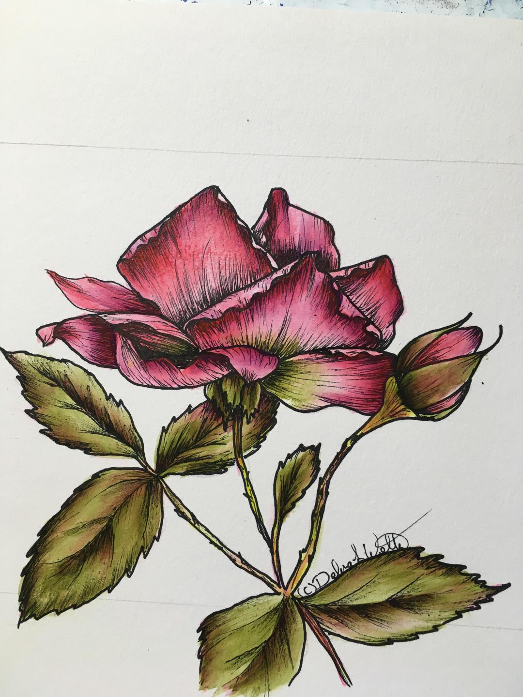 Upturned Rose- E-Packet - Debra Welty