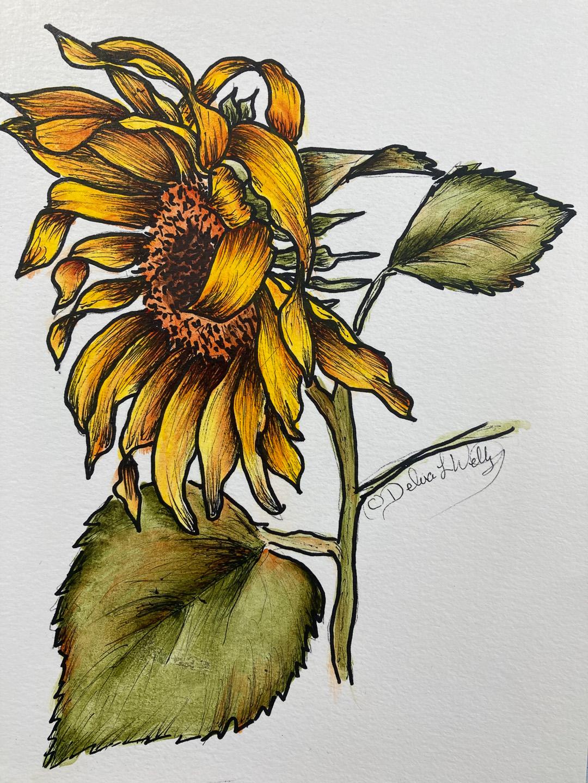 Sunflower - E-Packet - Debra Welty