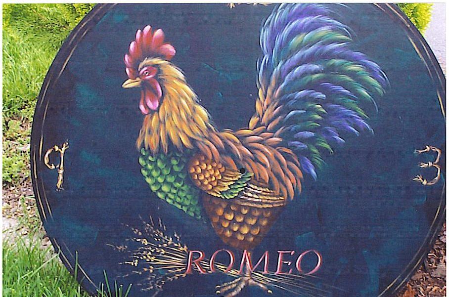 Romeo - E-Packet - Patricia Rawlinson