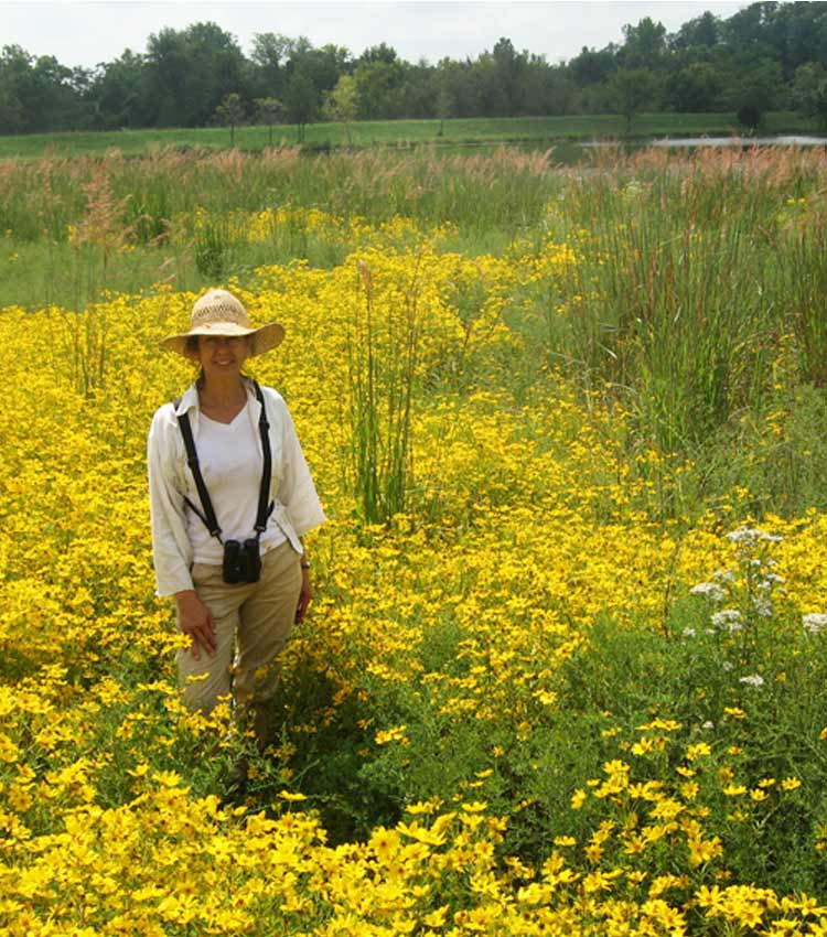 Susan Lordi in a field of yellow wild flowers