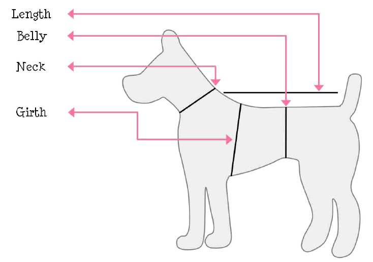 doggie-sizing.png