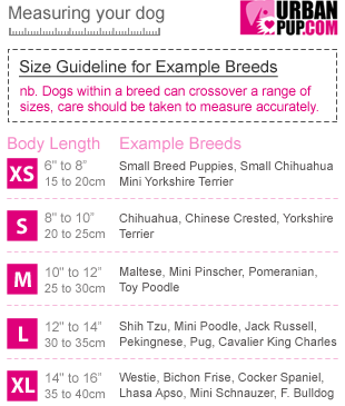 Dog Sizing Chart