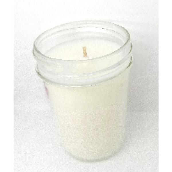 Fall Collection Candles (8 oz)